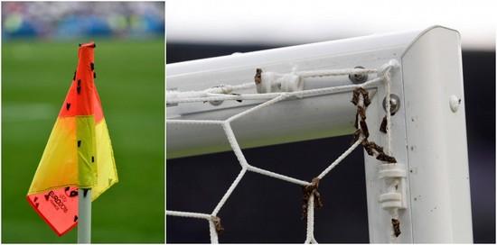 Насекомые атаковали финалистов Евро-2016