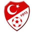 Россия сыграет товарищеский матч с Турцией