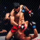Новости из мира MMA