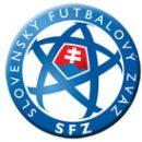Сборная Словакии: Шкртел и Хашик могут сыграть против Украины